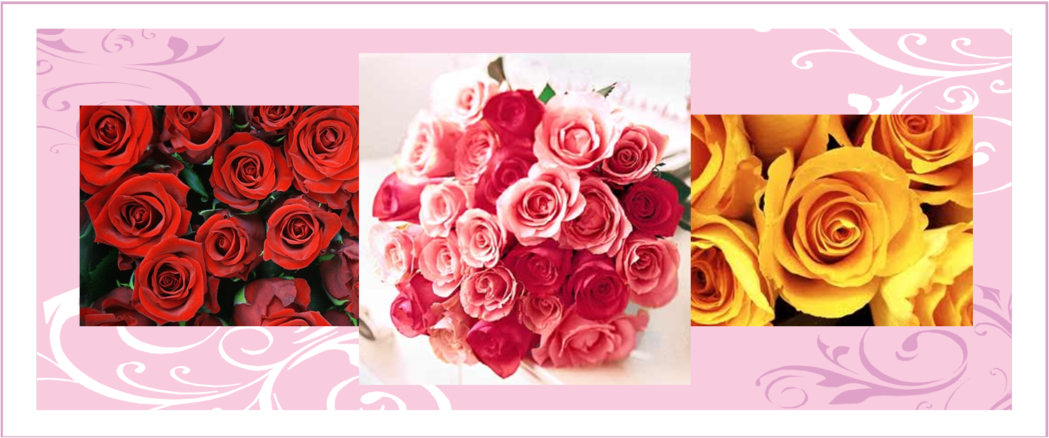 Valentines Day Flowers Feature Special Meanings Galore A Passion